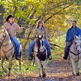 Horseback riding near Country Roads Campground