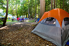 Tent Site at Country Roads Campground